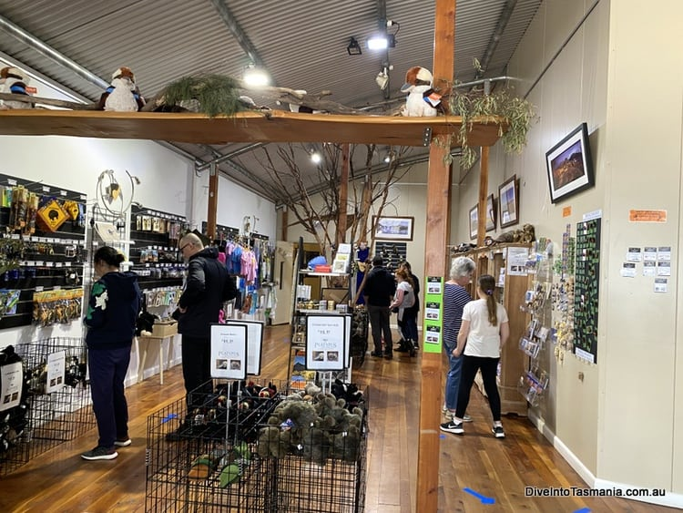 Platypus House gift shop
