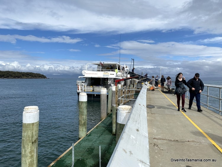 Maria Island ferry on arrival