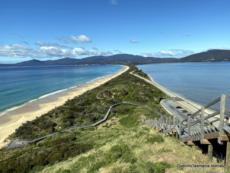 The Neck Bruny Island things to do