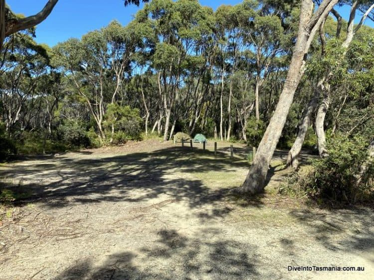 The Neck Reserve Camping Area