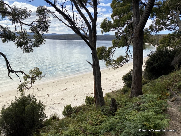 Jetty Beach from the campground Bruny Island