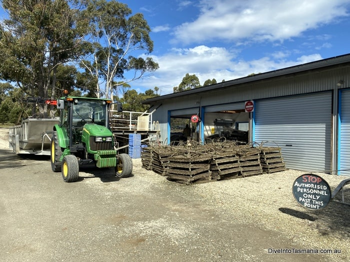 Get Shucked Bruny Island oyster processing
