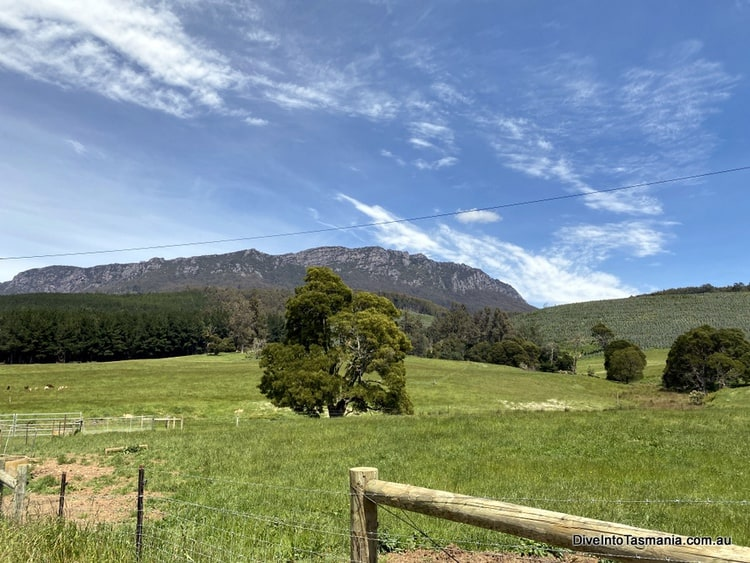 Views of Mt Roland while driving around NW Tasmania