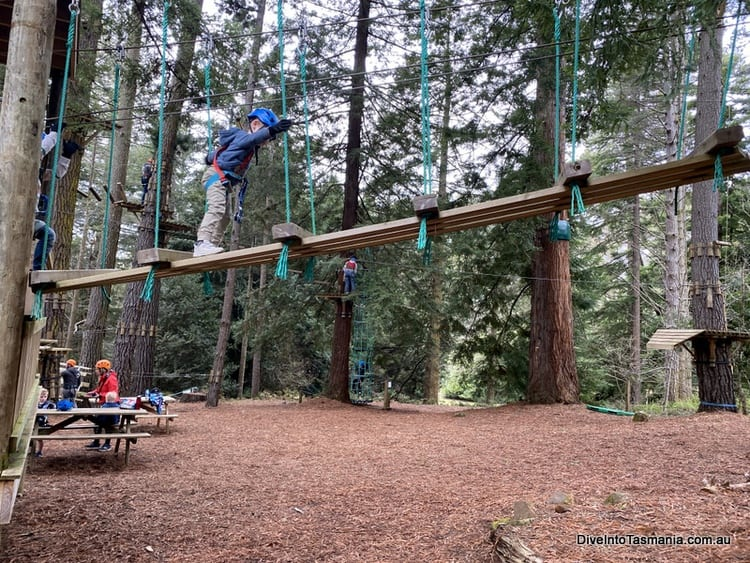 Hollybank Wilderness Adventures Yellow 4 - 7 Year Old Course