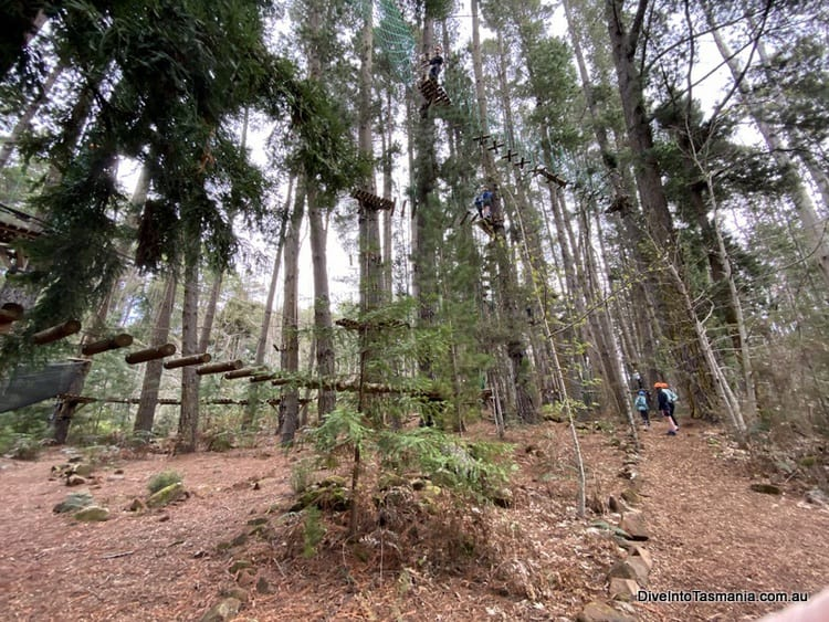Hollybank Wilderness Adventures ropes courses