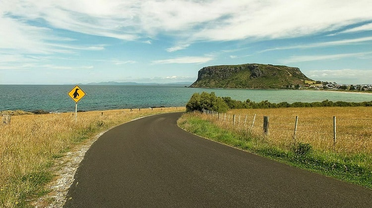 Tasmania road, The Nut And A Penguin Road Sign At Stanley
